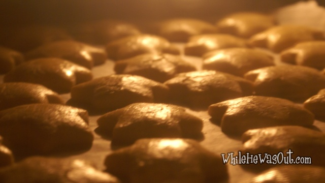 Gingerbread_Cookies  11