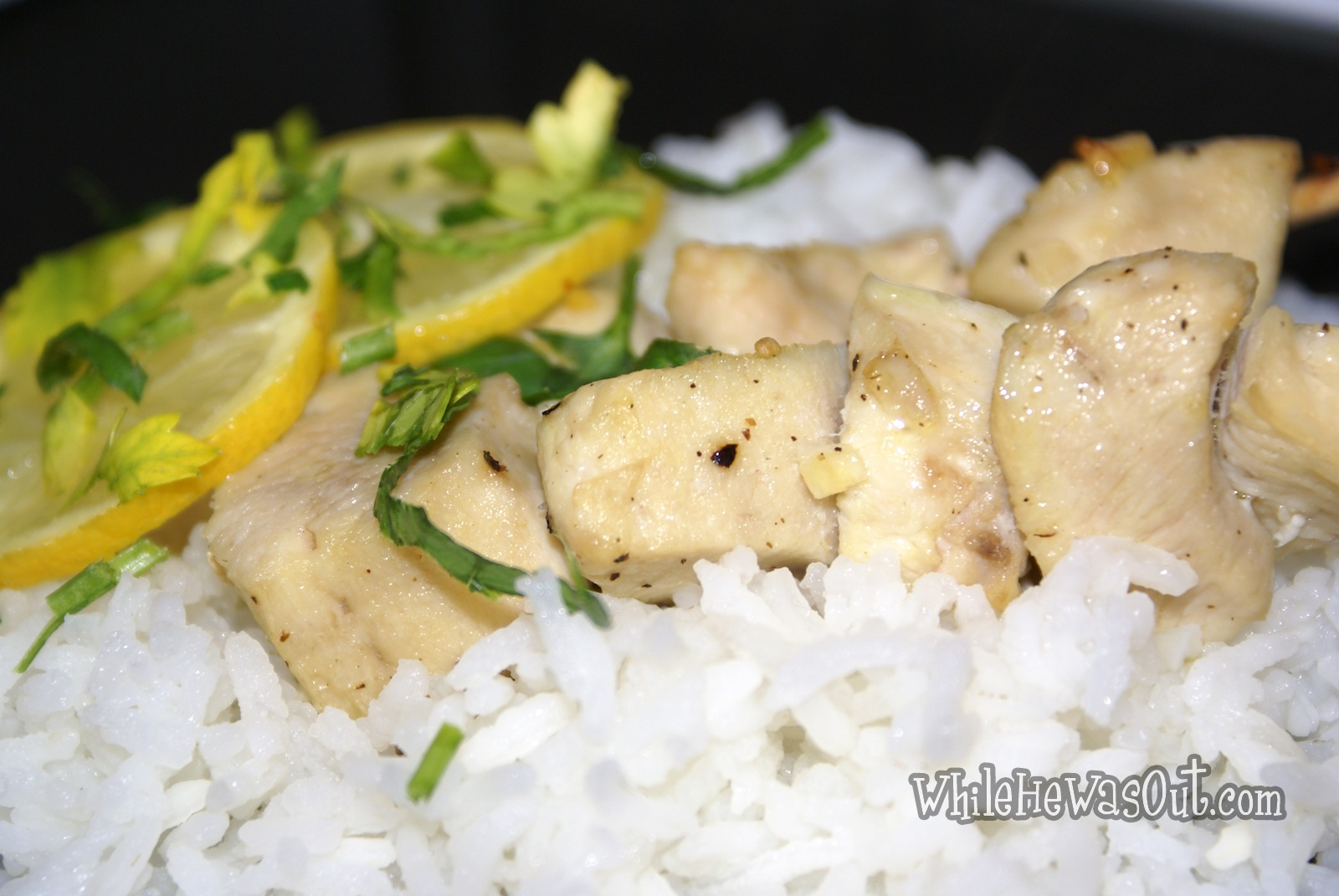 Lemon-Garlic Chicken Skewers | While He Was Out