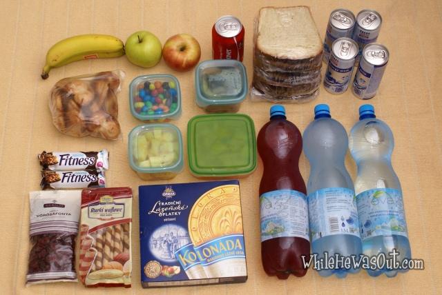 Picnic_Road_Trip_Food  07